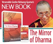 Mirror of Dharma book image