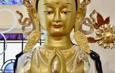 Awaken Your Buddha Nature - Teachings & Meditations on Compassion